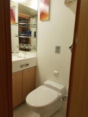 Toilet and bathroom area