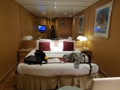 Celebrity Cruises - Floor 2 Cabin