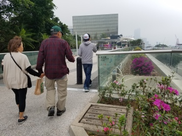 Walking to the Garden of Stars